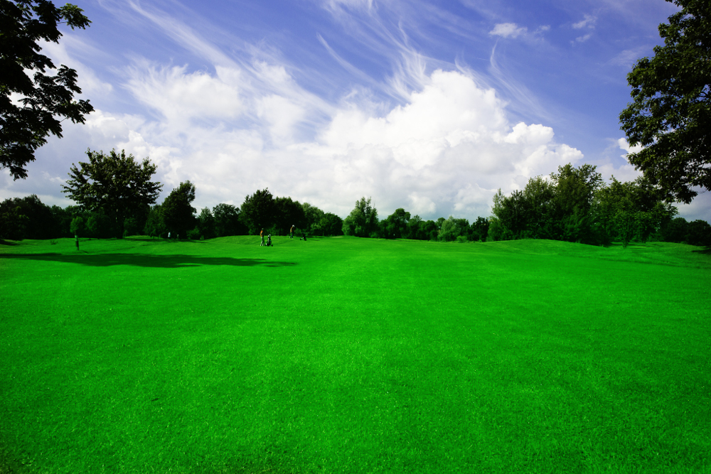 Castell' Arquato Golf Club gallery 49