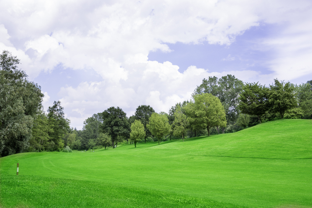 Castell' Arquato Golf Club gallery 75
