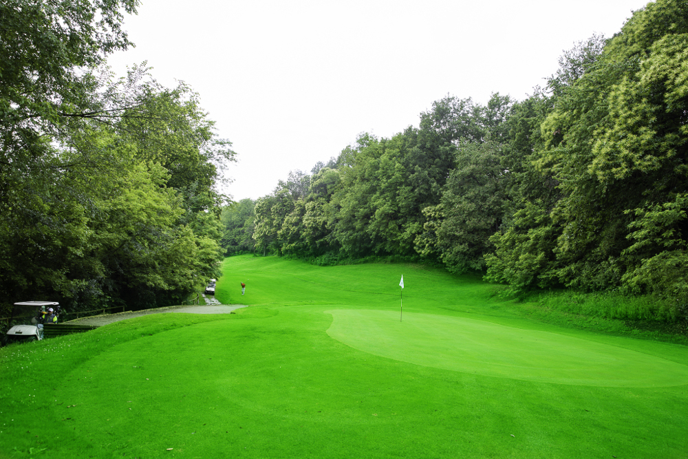Castell' Arquato Golf Club gallery 81