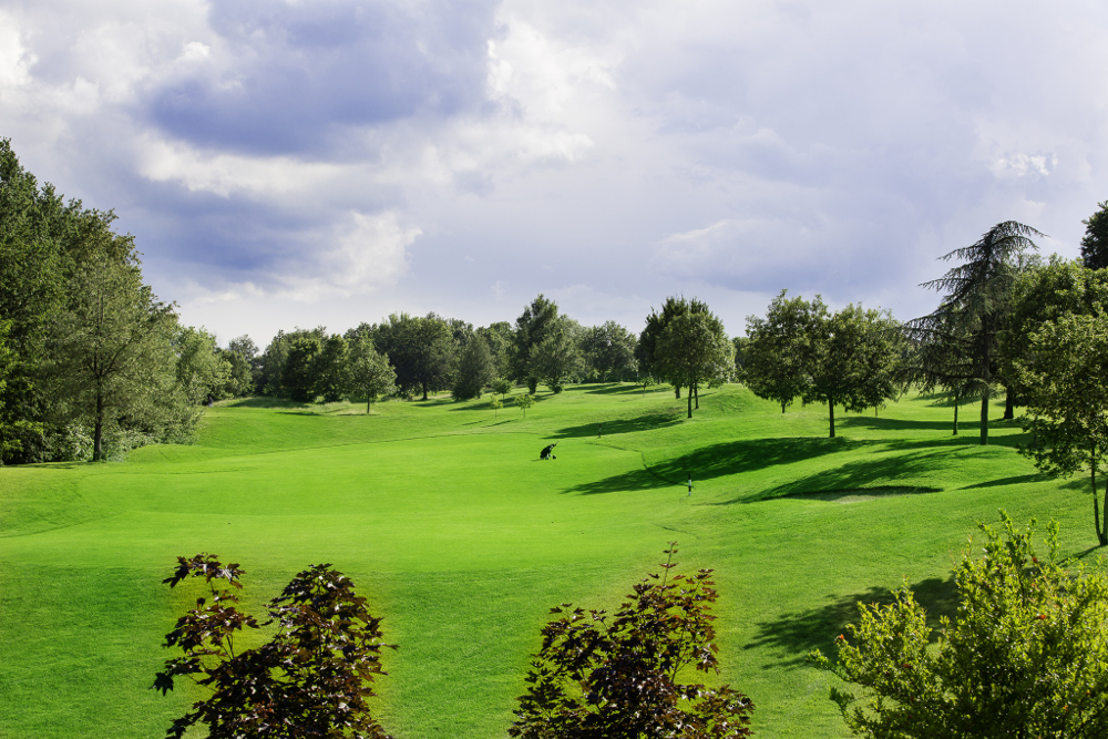 Castell' Arquato Golf Club gallery 84