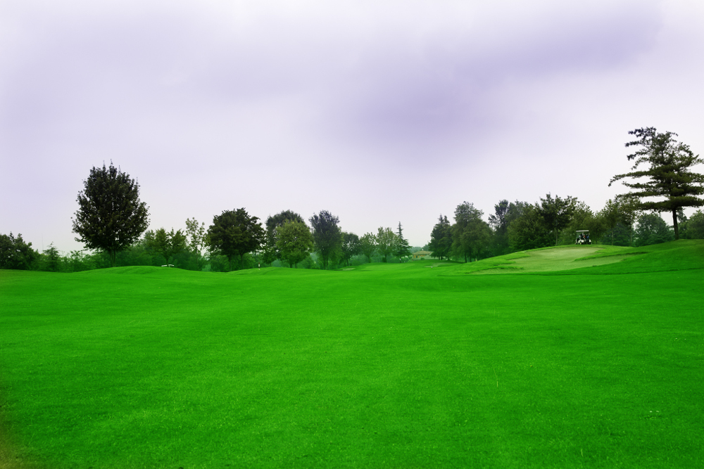 Castell' Arquato Golf Club gallery 53