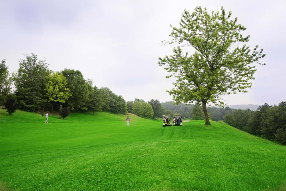 Castell' Arquato Golf Club gallery 59