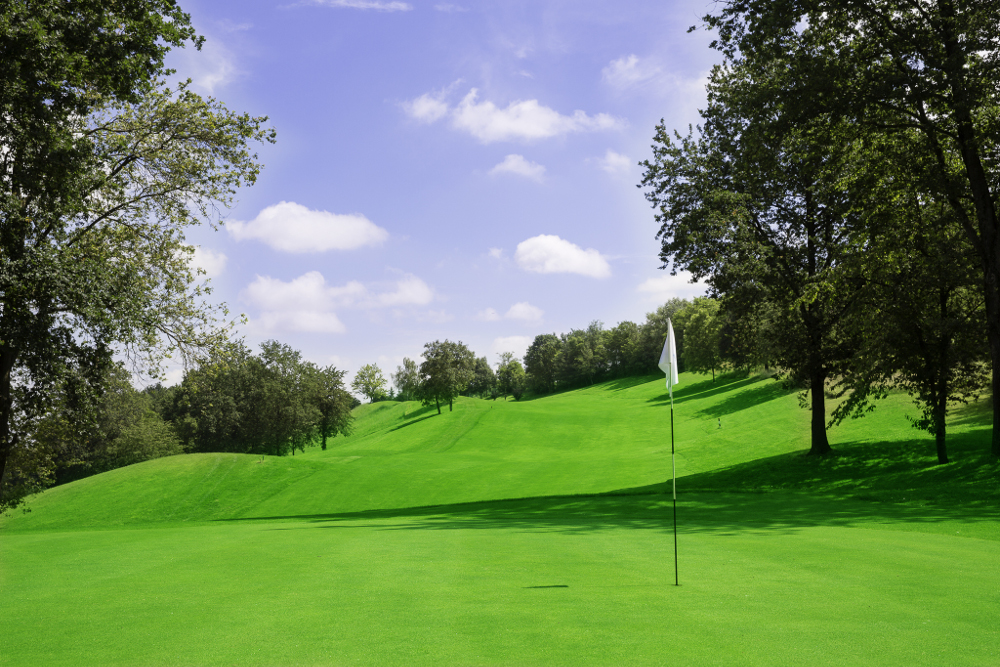Castell' Arquato Golf Club gallery 60