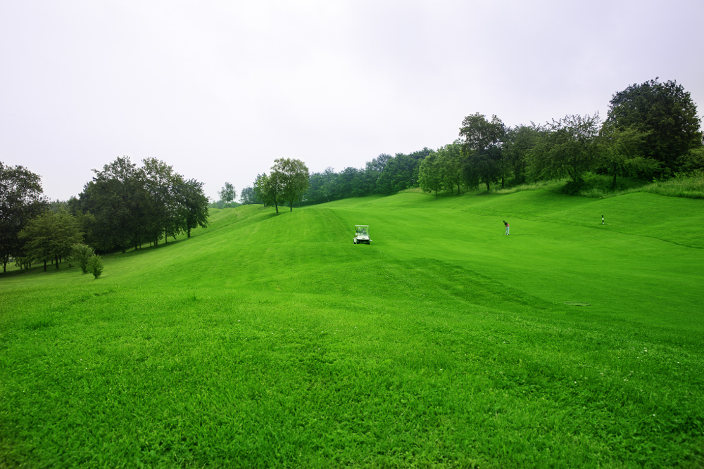 Castell' Arquato Golf Club gallery 62