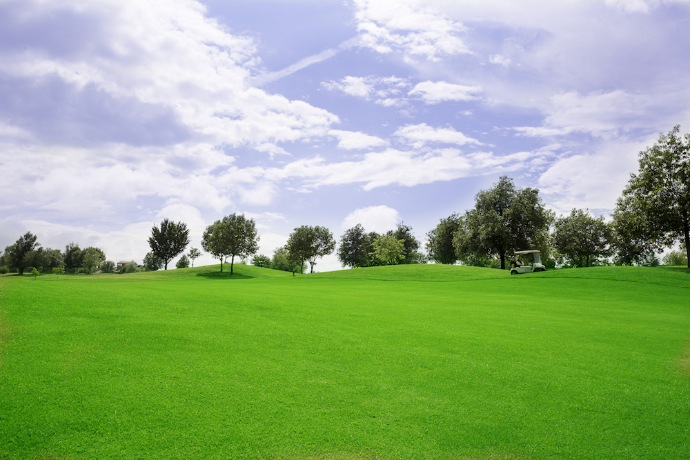 Castell' Arquato Golf Club gallery 4